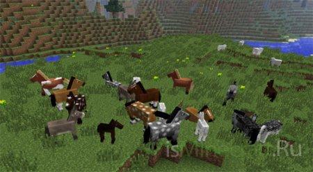 Лошади в Minecraft 1.6.2 / 1.6.1